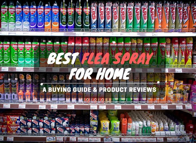 best flea spray for home