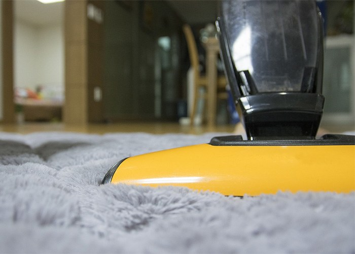best flea treatment for carpet